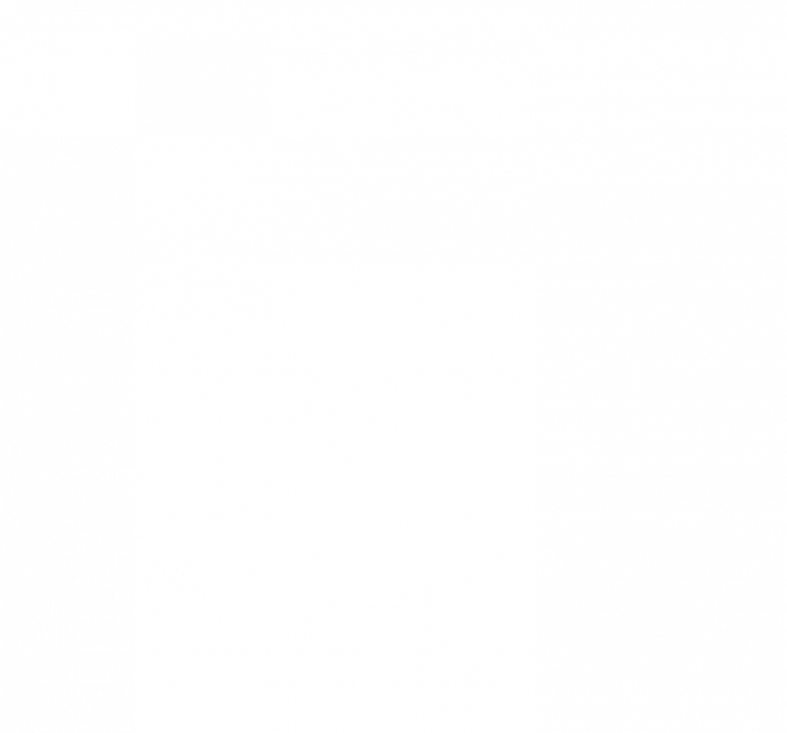 5. CAD Schiedel KOMBIGAS