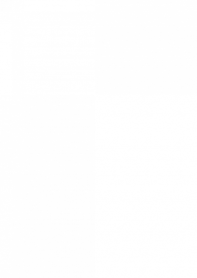 Schiedel WDS prechod – prospekt – 042020