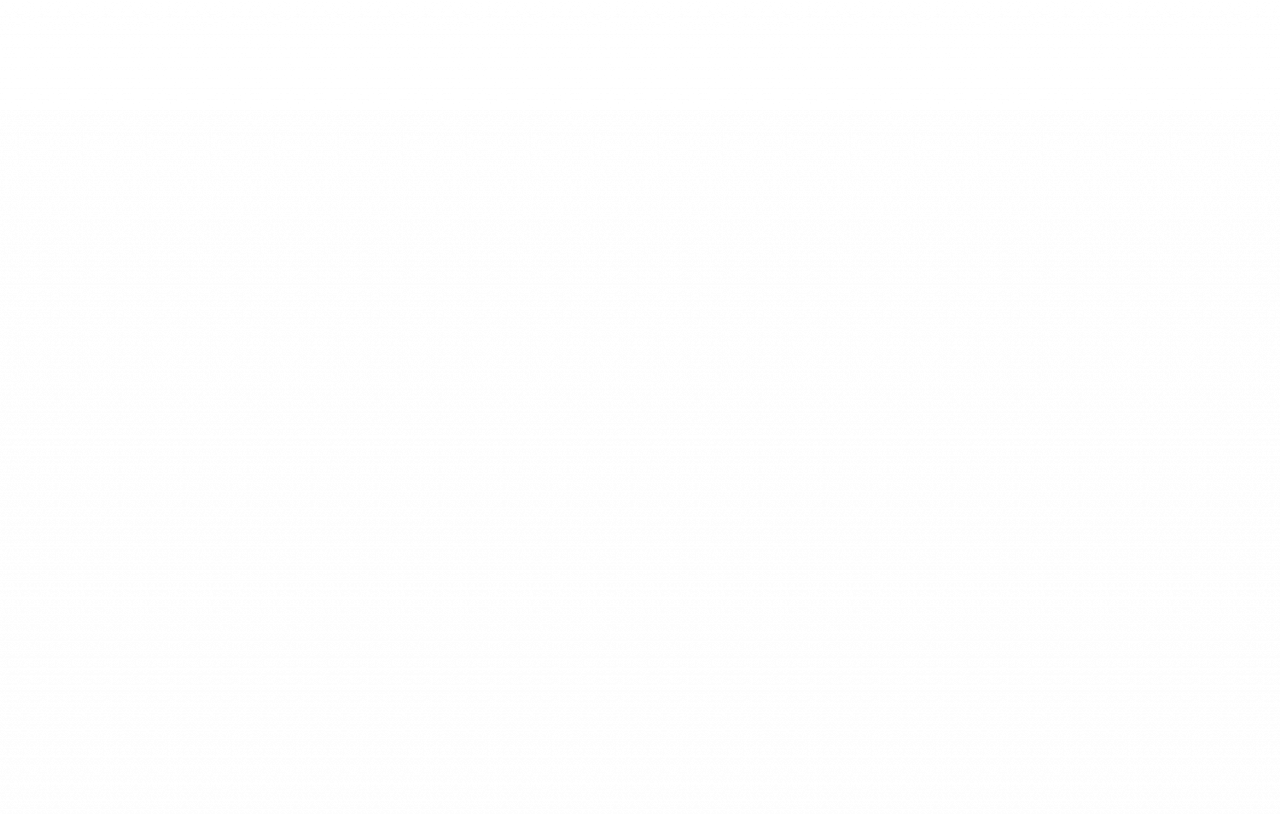 Schiedel auf der ISH 2017 8. März 2017 – Digitalisierung mit BIM, innovative Edelstahl-Schornsteinsysteme und neue KINGFIRE®-Kaminofenmodelle auf einem völlig neuen Messestand